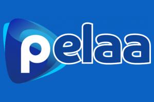Pelaa.com Kokemuksia Ilmaiskierroksista ja kotiutuksesta